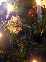 weihnachtsbaumpart
